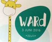 Ward Van Acker - Zoontje van Joke en Wodan